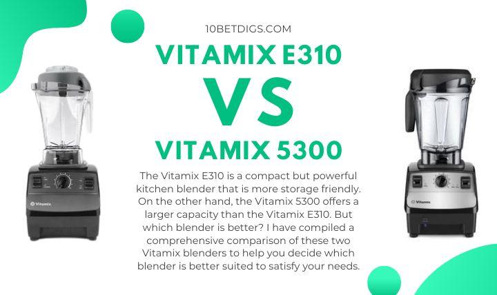 Vitamix E310 and 5300
